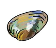 marudobu